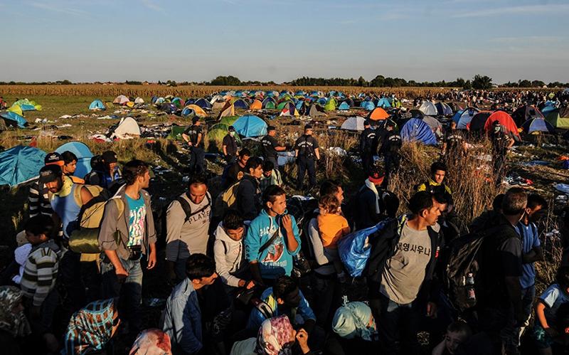 refugee-resettlement